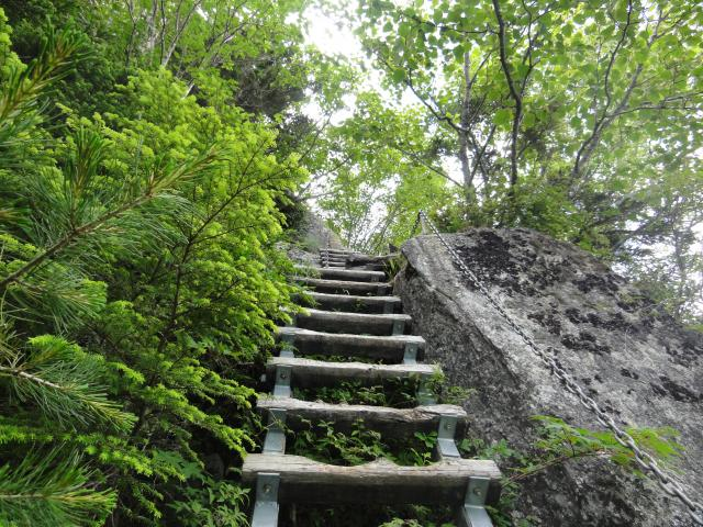 夏こそ目指そう「急登登山道」。...