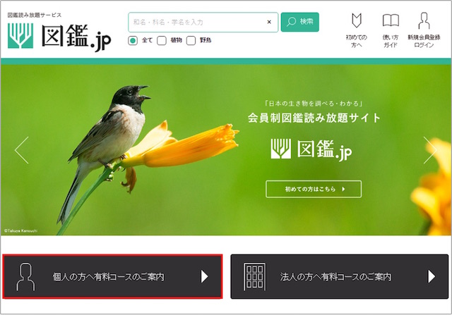図鑑.jp