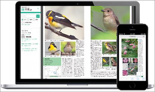 図鑑.jp表示イメージ