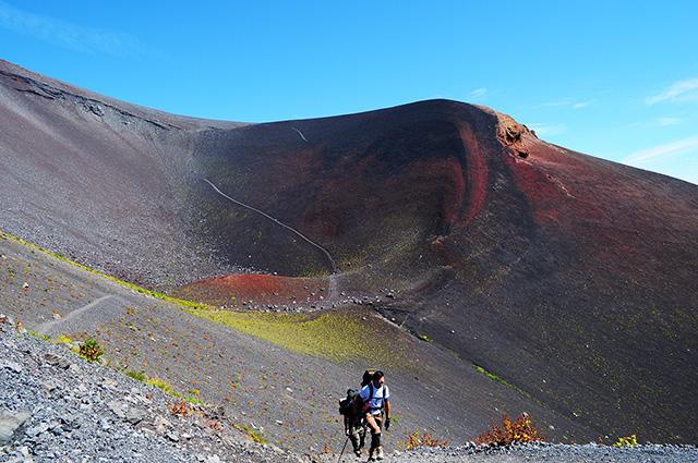富士山の紅葉がみられるかも!?...