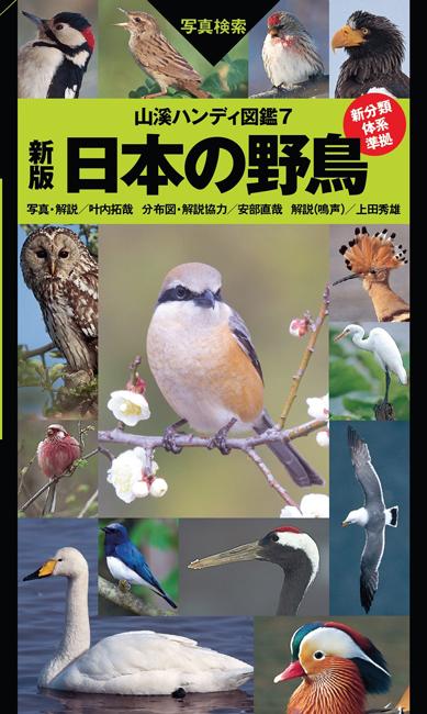 『山溪ハンディ図鑑7 新版 日本の野鳥』