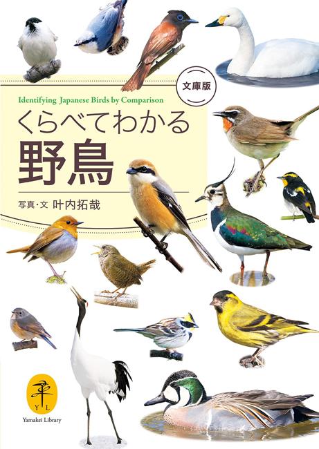 『くらべてわかる野鳥 文庫版』