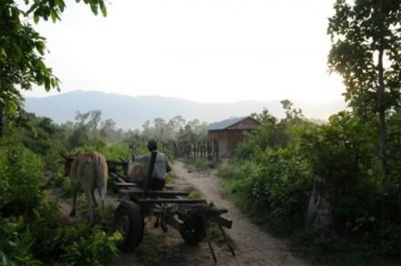 カンボジア最高峰アオラル山(1,8...