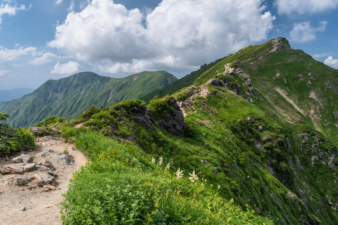 梅雨の晴れ間を狙って、ちょうど残雪の消えた谷川岳へ。ロープウェイを使って夏山を満喫する YAMAYA - ヤマケイオンライン / 山と渓谷社