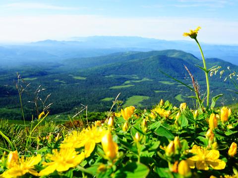 北海道の原風景が広がる原始ヶ原へ