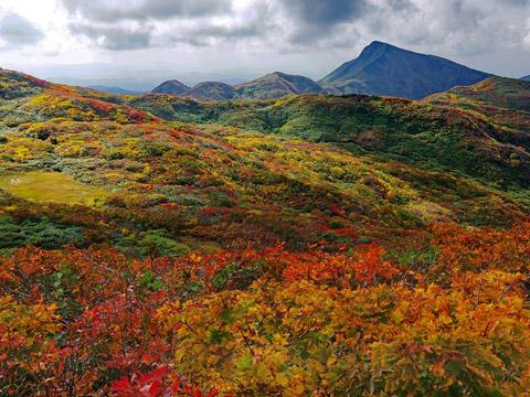 灌木の紅葉が見事な焼石連峰の寂峰