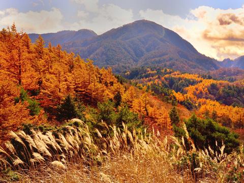 丹沢一の紅葉と展望と落日を鑑賞