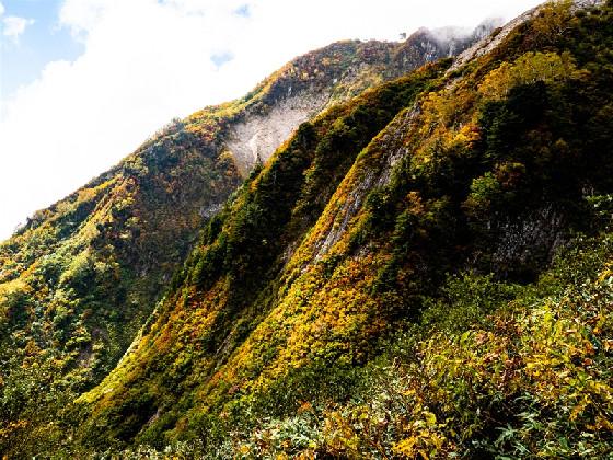 荒菅沢奥壁の紅葉と岩峰を楽しむ