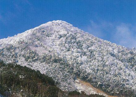 尾鈴山 - シャクナゲの群生地と...