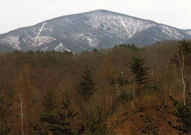 遠島山 - とおじまやま:標高1,262m-東北:北上山地 - Yamakei Online ...