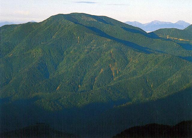国師ヶ岳 - こくしがたけ:標高2...