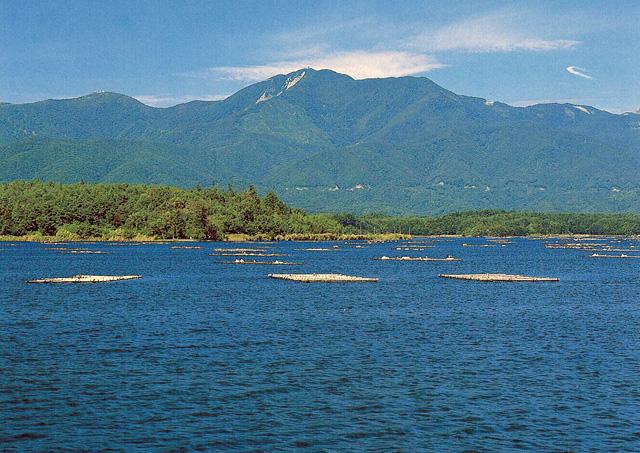 金北山 - きんぽくさん:標高1,172m-上信越:佐渡 - Yamakei Online / 山と溪谷社