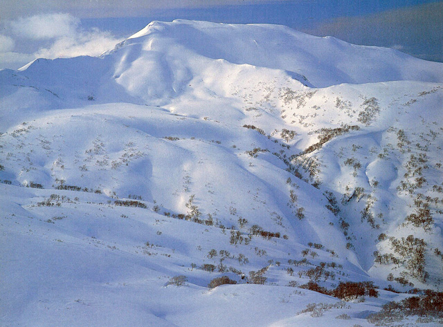 暑寒別岳 - しょかんべっだけ:標高1,492m-北海道:増毛山地 - Yamakei Online / 山と溪谷社