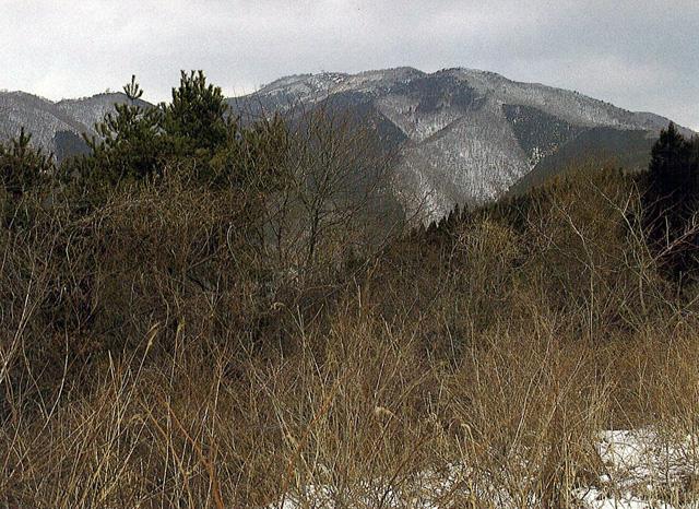 寂地山 - じゃくちさん:標高1,337m-中国・四国:冠山山地 - Yamakei Online / 山と溪谷社